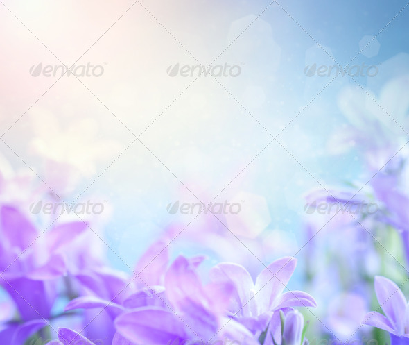Floral background - Stock Photo - Images