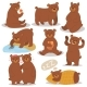 Cartoon Bear Character Different Poses Set