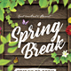 Spring Break / Festival Flyer