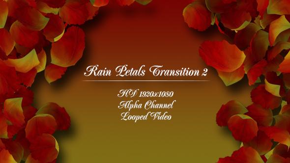 VideoHive Rain Petals Transition 2 19479093