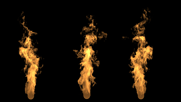 VideoHive 3 Long Fire 19484189