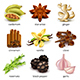 Species and Herbs Icons Vector Set