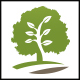 Tree Grow Logo