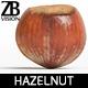 Hazelnut 003