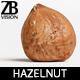 Hazelnut 004