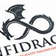 Endless Dragon Logo Template