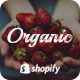 Organic - Drag & Drop Multilingual Responsive Shopify Theme