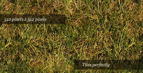 3DOcean Grass Texture III 74027