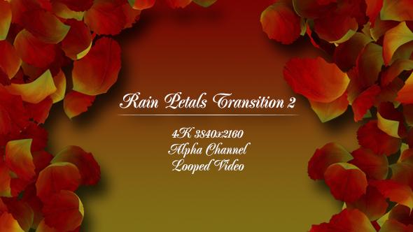 VideoHive Rain Petals Transition 2 19521755