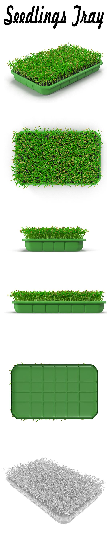 Seedlings Tray # 1 - 3DOcean Item for Sale