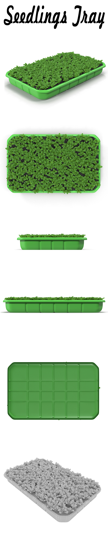 Seedlings Tray # 3 - 3DOcean Item for Sale