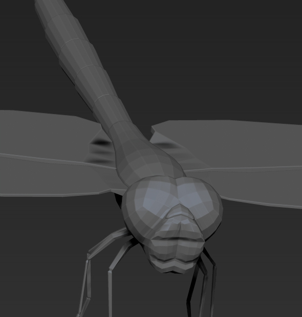 Dragonfly low poly - 3DOcean Item for Sale