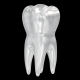 Teeth 3d Render Set