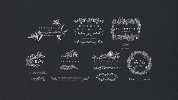 VideoHive Botanical Titles 19530618