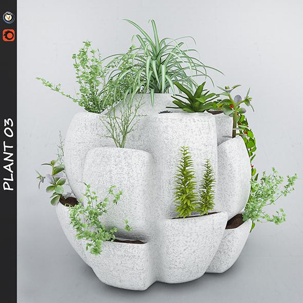Plant - 3DOcean Item for Sale