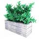 Plant tree 02