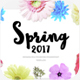 Spring 2017 - Powerpoint template