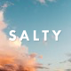 Salty - Responsive WordPress Blog Theme
