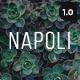 Napoli - Modern Photography Portfolio Responsive HTML Template