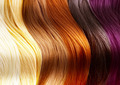 Hair Colors Palette - PhotoDune Item for Sale