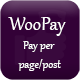 WooPay Pay Per page/Post - WooCommerce WordPress Plugin