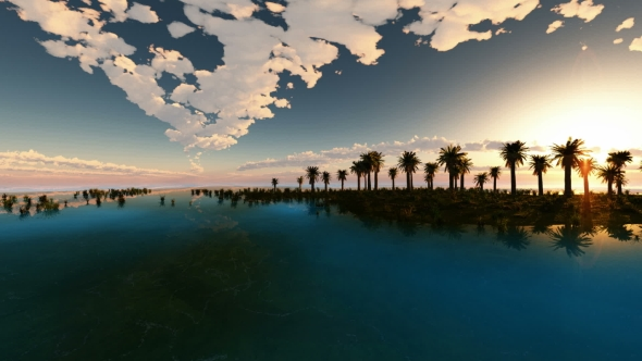 VideoHive Tropical Island with Palms 19560241