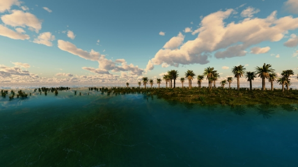 VideoHive Tropical Island with Palms 19560247