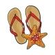 Pair of Flip Flops and Starfish