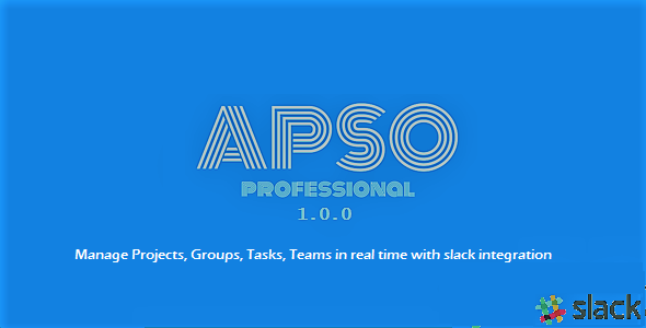 APSO Professional (Project Management Tools) images