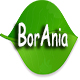 Borania