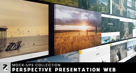 Perspective Presentation Web Mockup