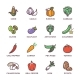 Vegetables Vegan Raw Food Colored Vector Icons Set