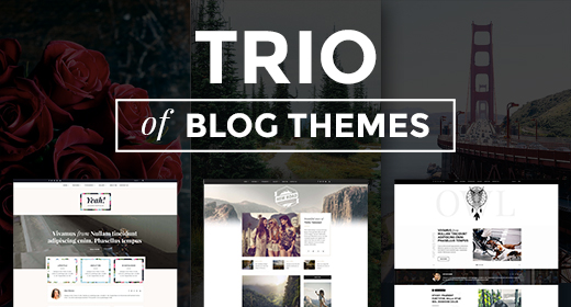 Trio of Blog Themes