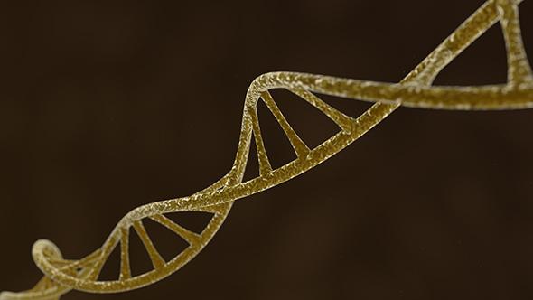 3DOcean DNA 19594809