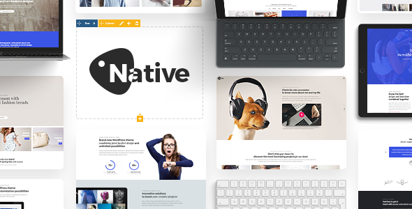 Native - Powerful Startup Development Tool by DFDevelopment | ThemeForest