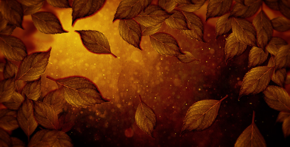 VideoHive Falling Leaves 19596364
