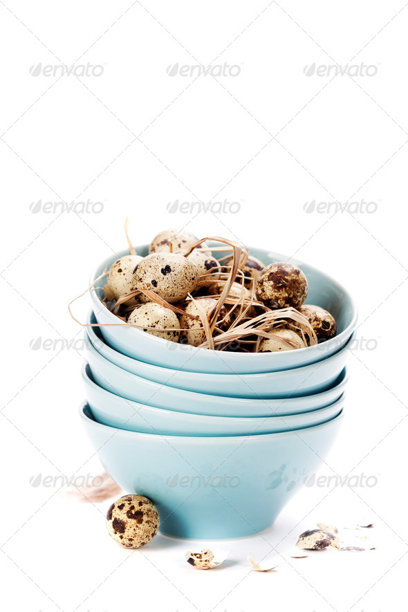 quail eggs - Stock Photo - Images