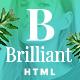 Brilliant - Morden Ecommerce HTML5 Template