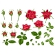 Set of Decorative Red Roses