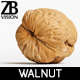 Walnut 005