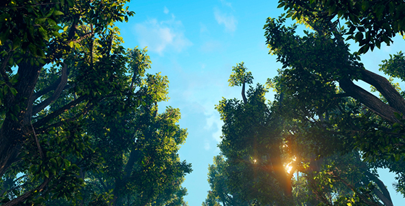 VideoHive Green Forest 19617039