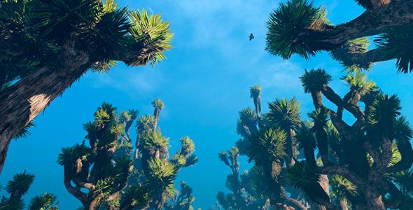 VideoHive Cactus Trees 19617045