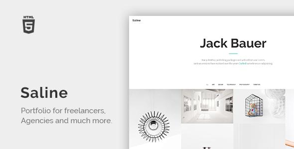 Download Saline - Portfolio for Freelancers