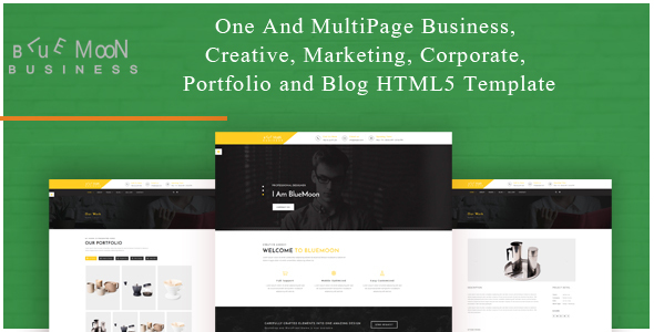 BlueMoon - One and Multipage Creative , Business , Corporate Agency and Portfolio HTML5 Template