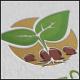 Plant Seeds Logo