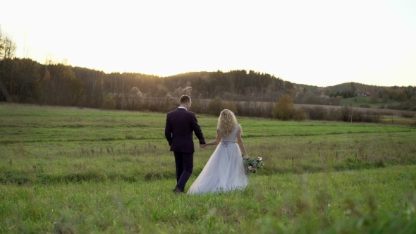 VideoHive Wedding Couple Walking in a Field 19622593