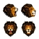 Collection of Four Colored Lion Heads