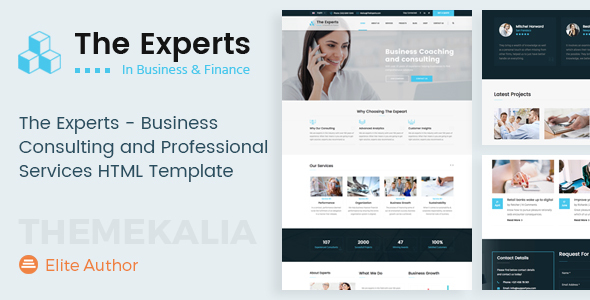 Download The Experts - Business Consulting and Professional Services HTML Template