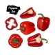 Hand Drawn Sketch Style Bell Pepper Set Isolated