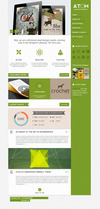 12_bonus_homepage_green.__thumbnail